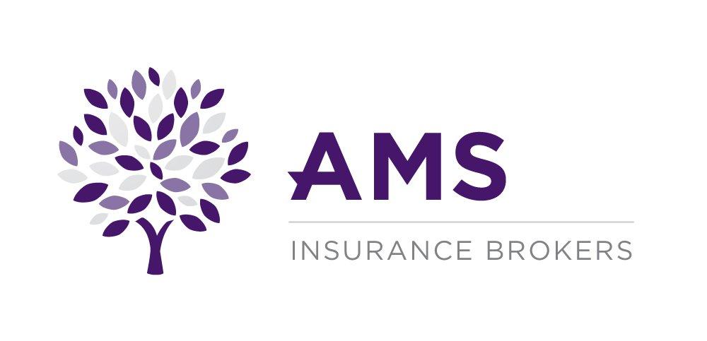 AMS Logo MED